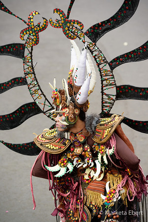 Creative costume from Jember Fashion Carnival